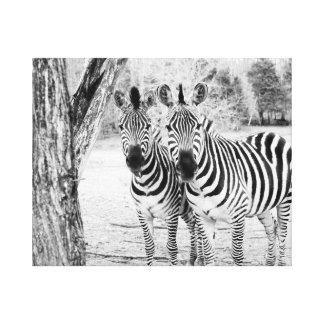 Canvas da fotografia do duo da zebra impressão em tela