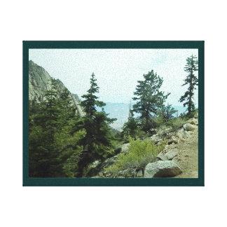 Canvas da opinião #5 da fuga do Mt Whitney - pelo