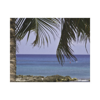 Canvas de Cayman Islands