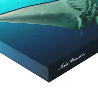 Canvas de Mantaray 2
