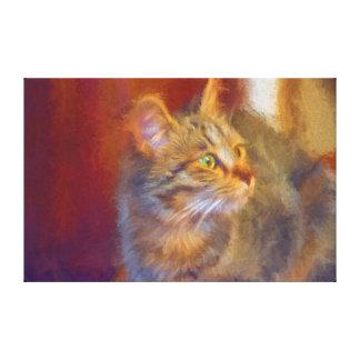 Canvas do gato impressão em tela
