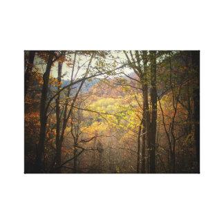 Canvas feitas com fotografia 22 impressão de canvas esticadas