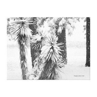 Canvas feitas com fotografia 4 impressão de canvas envolvidas
