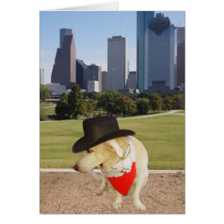 Cão bonito que pensa de você em Houston Cartão Comemorativo