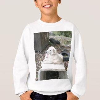 Cão branco feliz camiseta