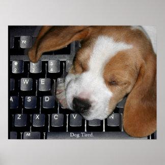 Cão cansado poster