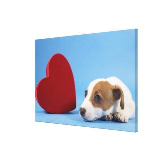 Cão com coração impressão de canvas esticadas