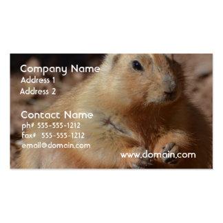 Cão de pradaria carnudo cartão de visita