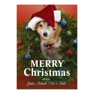 Cão de Shiba Inu que senta-se na grinalda do Natal Convite 12.7 X 17.78cm