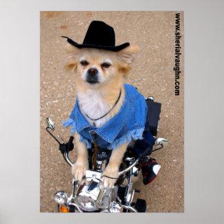 Cão do motociclista do vaqueiro posteres