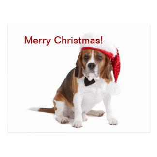 Cão do Natal Cartão Postal