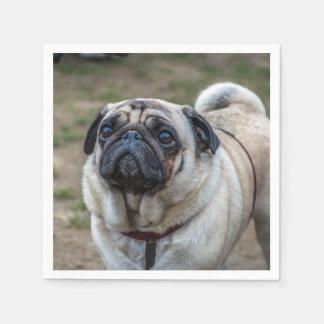 Cão do Pug Guardanapo De Papel