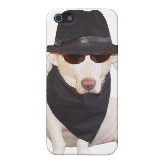 Cão dos azuis capa iPhone 5
