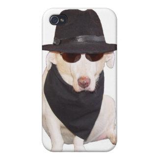 Cão dos azuis iPhone 4 capa