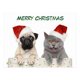 Cão e Kittten do Pug do Feliz Natal Cartão Postal