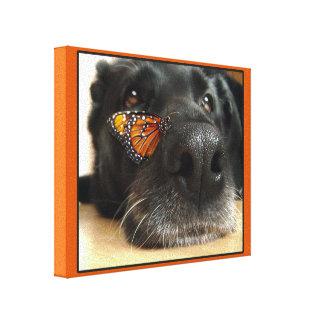 Cão preto do laboratório com borboleta