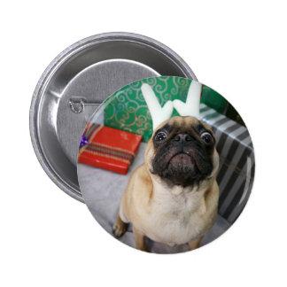 Cão surpreendido engraçado do Pug do feriado Nata