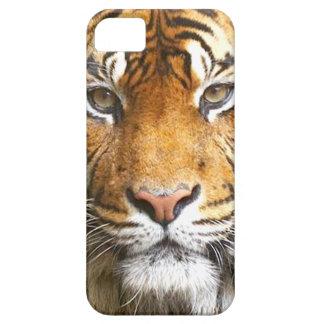 Capa Barely There Para iPhone 5 caixa da cara iphone5 do tigre