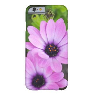 Capa Barely There Para iPhone 6 Flores da margarida africana