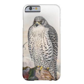 Capa Barely There Para iPhone 6 Pássaros adultos de Gould do falcão de Islândia de