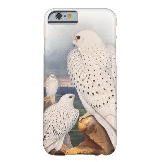 Capa Barely There Para iPhone 6 Pássaros claros adultos Grâ Bretanha do falcão de