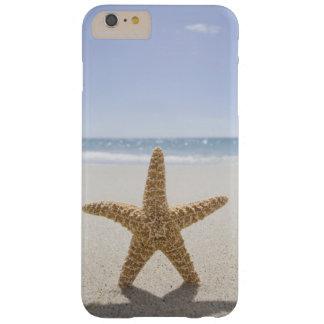 Capa Barely There Para iPhone 6 Plus EUA, Massachusetts, Cape Cod, Nantucket, fim