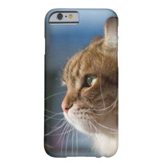 Capa Barely There Para iPhone 6 Suiças do gato no sol
