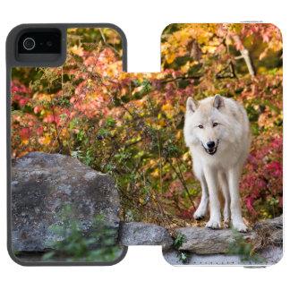 CAPA CARTEIRA INCIPIO WATSON™ PARA iPhone 5