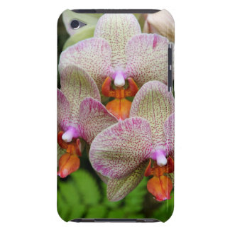 capa do ipod touch - orquídea capa para iPod touch