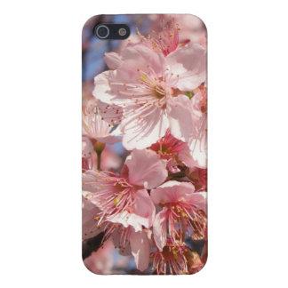 Capa Flor de Cerejeira iPhone 5 Capas