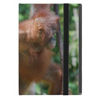 Capa iPad Mini Orangotango na floresta húmida de Bornéu