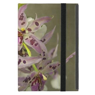 Capa iPad Mini Orquídeas cor-de-rosa e brancas