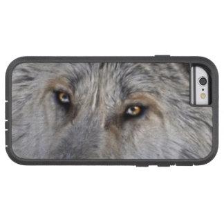 Capa iPhone 6 Tough Xtreme O lobo ártico branco Eyes a foto dos animais