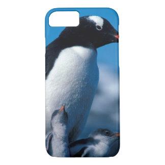Capa iPhone 8/7 A Antártica, ilhas Secundário-Antárcticas, sul