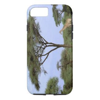 Capa iPhone 8/7 África, Botswana, delta de Okavango. Do sul