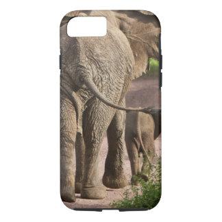 Capa iPhone 8/7 África. Tanzânia. Mãe e vitela do elefante em
