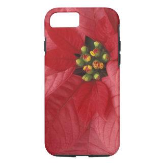 Capa iPhone 8/7 America do Norte, EUA, WA, Woodinville, vermelho 2
