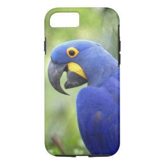 Capa iPhone 8/7 Ámérica do Sul, Brasil, Pantanal. Psto em perigo