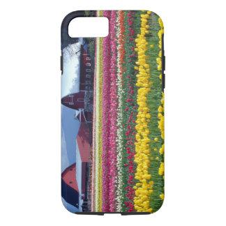 Capa iPhone 8/7 Campo de exposição da tulipa