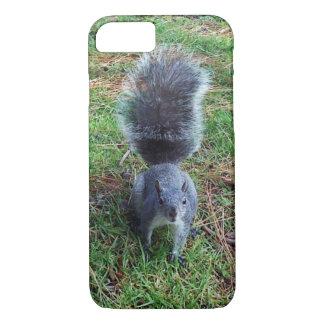 Capa iPhone 8/7 Esquilo cinzento
