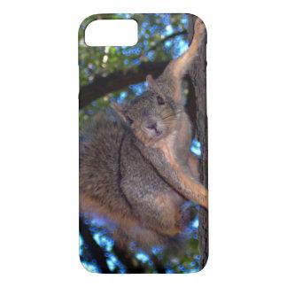 Capa iPhone 8/7 Esquilo curioso