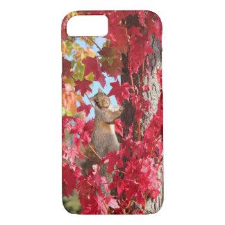Capa iPhone 8/7 Esquilo curioso na árvore do outono