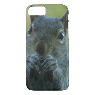 Capa iPhone 8/7 Esquilo gigante
