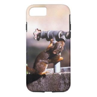 Capa iPhone 8/7 Esquilo sedento