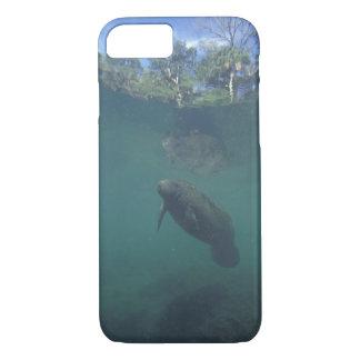 Capa iPhone 8/7 EUA, FL, peixe-boi