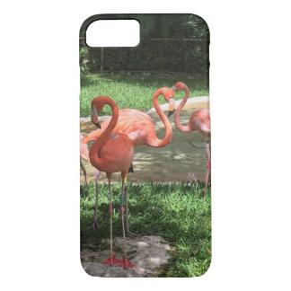Capa iPhone 8/7 Flamingos no Maya de Riviera em México