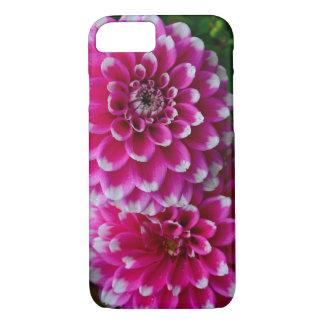 Capa iPhone 8/7 Flores cor-de-rosa e brancas da dália