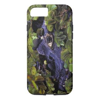 Capa iPhone 8/7 Floresta húmida de Ámérica do Sul, Brasil, Amazon,