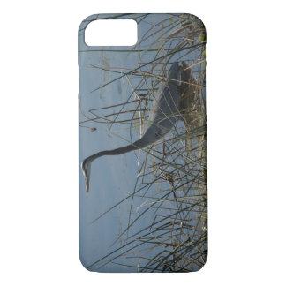 Capa iPhone 8/7 Garça-real de grande azul em pantanais de Viera