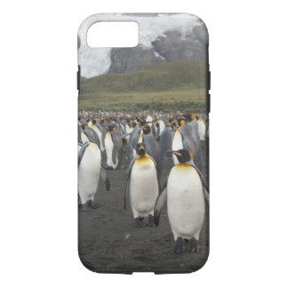 Capa iPhone 8/7 Ilha sul de Geórgia, porto do ouro. Pinguim de rei